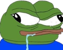 7810_Pepe_Retarded.png